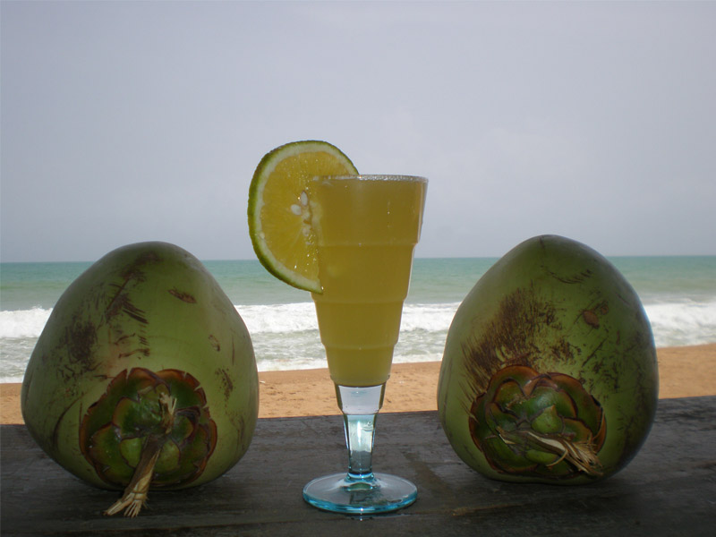 Bar-plage-grand-popo-benin-jungle-beach-bar-cocktails